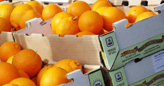Über Orangen, Vitamin C und ein herrliches Orangen-Mandel-Kuchen Rezept