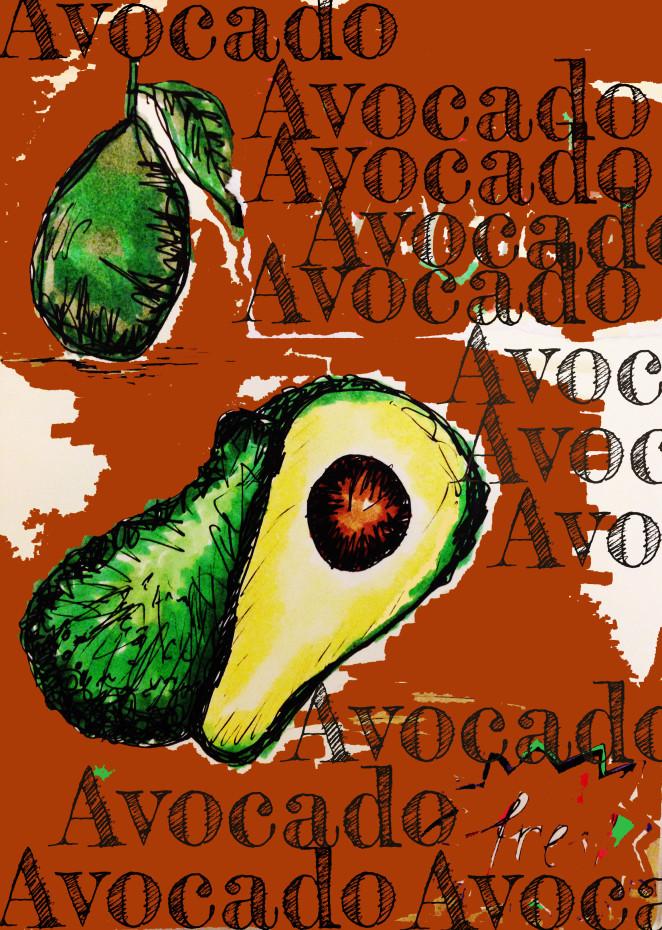Über die grüne Beere – Avocado